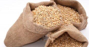 Legge di bilancio: Confesercenti e associazioni di categoria al ministro Patuanelli, da nuove norme su tracciabilità cereali pesanti oneri per le imprese